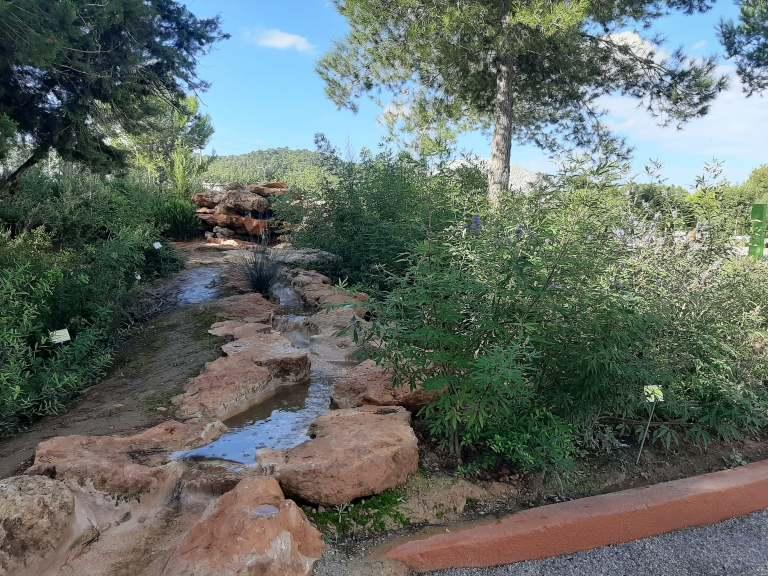 Lago Jardín botánico